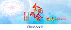 """海外侨界人士热议中国两会:在共建"""""""