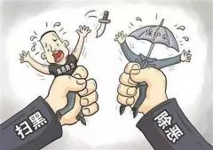 """官宣丨扫黑除恶十五种类型""""保护伞"""""""