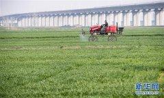绿色点染希望的田野——全国春耕生产