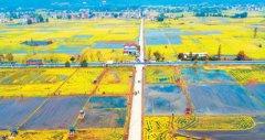 财政活水流向绿色农业(春耕进行时)