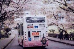 日本进入全年旅游旺季 8万块的七星列车
