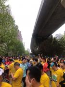 2019汉马鸣枪开跑!13公里健康跑冠军诞