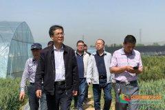 西安文理学院党委书记问向荣赴蓝田县
