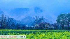 杭州推出电子健康驾照保障市民出行安